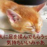 【サロンでリフレ】身体ポカポカ、老廃物排出!!