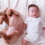 抱っこで寝かしつけはもう無理!!横にしたまま赤ちゃんを寝かせるコツ